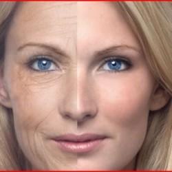 Aging reversals